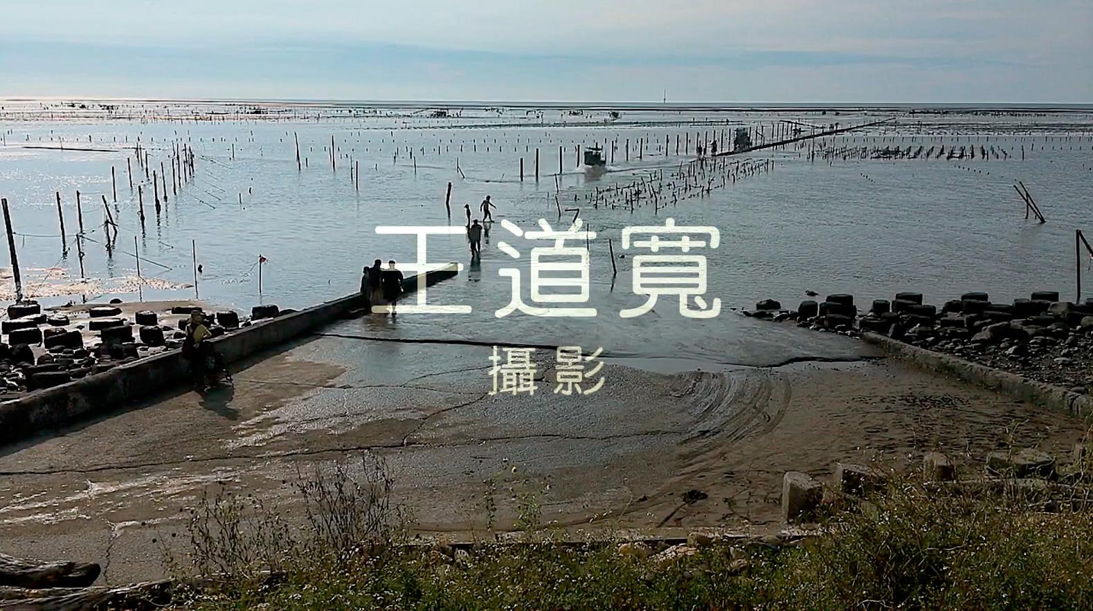 彰化王功海洋生態縮時攝影影片