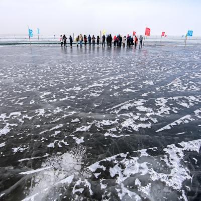 2019.2.3 內蒙古烏梁素海冰凍的海面
